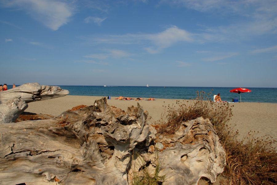 Ein fast durchgehender Sandstreifen, an dem man überall mit Kindern baden kann, ist charakteristisch für die Ostküste.