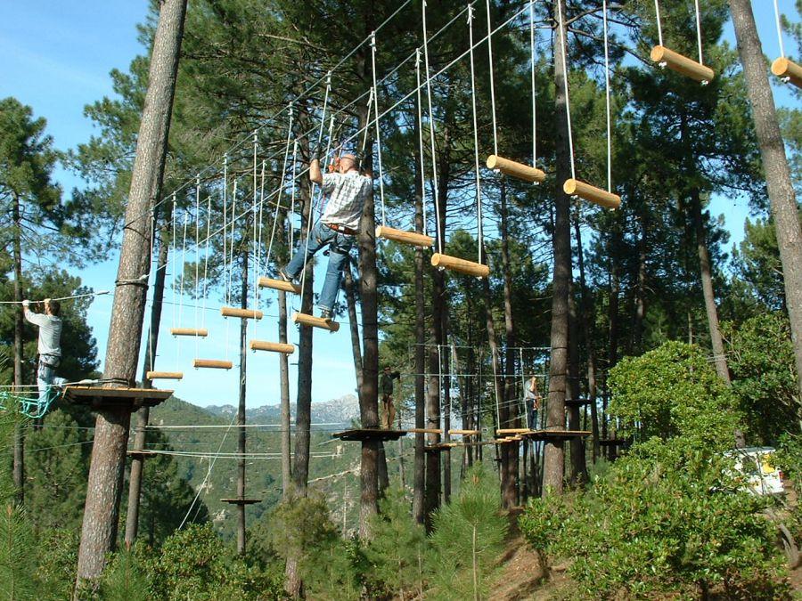 Fans des Kletterns bietet der Kletterwald in Vero viele Möglichkeiten sich von Baum zu Baum zu hangeln.