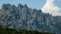Inmitten einer kargen, von Felsgeröll und Tannen geprägten Berglandschaft